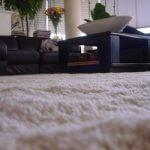 Alpaca Shag Pile Carpet