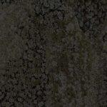 Gecko-Darktaupe